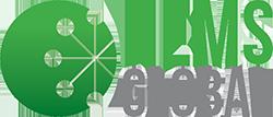 Hems Global Logo